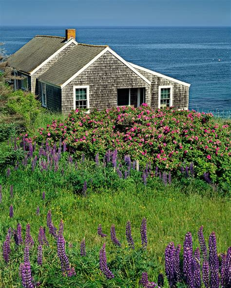 Pin By Haylee Steele On Wanderlust Pinterest Sea Cottages