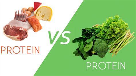vegetables vs protein animal vs plant protein