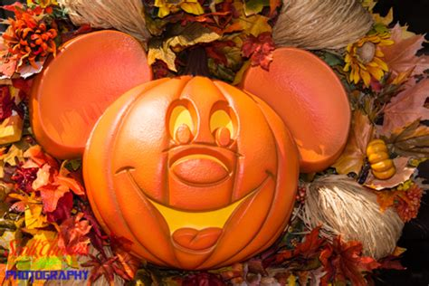 mickey mouse pumpkin heads in the magic kingdom (picture