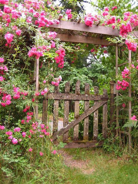 Treille Jardin by Treille Rosier Grimpant I Decorate My Garden
