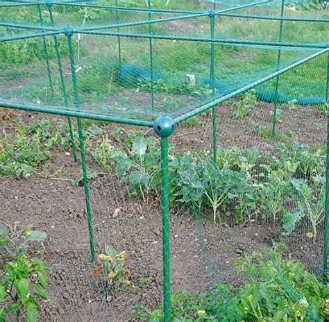 Vegetable Cages Butterfly Netting Brassica Crop Gardening Netting For Vegetables