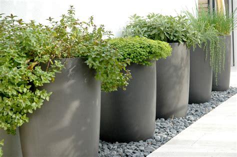 planters extraordinary extra large indoor planters indoor