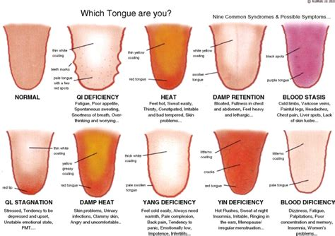easy to digest food what does your tongue tell you integrative fertility
