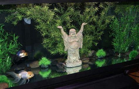 aquarium decoration ideas freshwater aquarium decorations ratemyfishtank com
