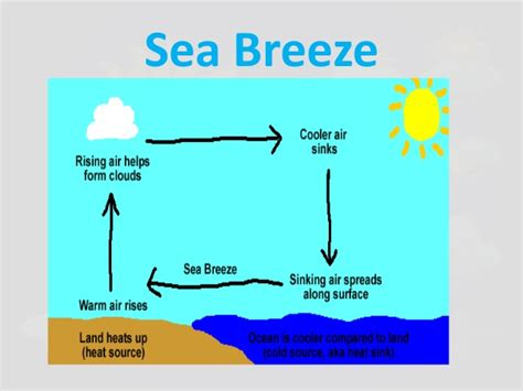 diagram of sea and land types of breezes