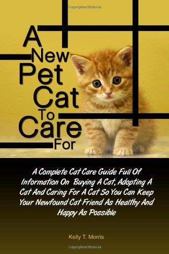 complete kitten care books 10 best ideas about cat care on cats adoption