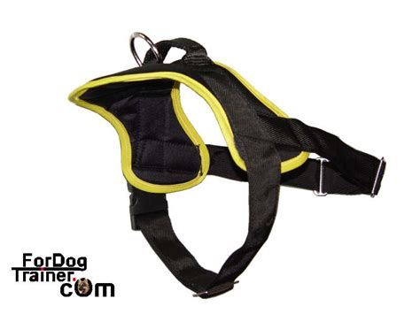 halter for dogs harness harnesses