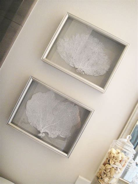 sea fan shadow box 1000 images about shadow boxes and wall frames on