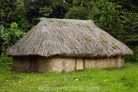 the house fiji traditional fijian house with thatched roof coral coast