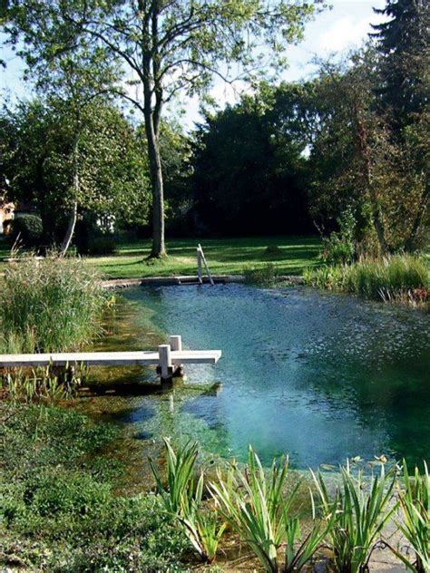natural backyard pools best 25 natural backyard pools ideas on pinterest natural pools natural swimming