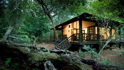 how to create african safari home d 233 cor home interior design luxury african safaris south america asia tours