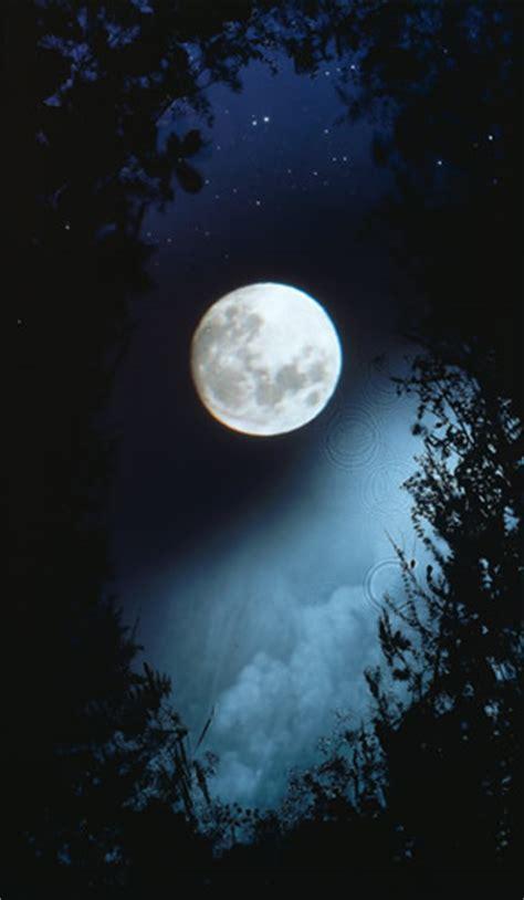 il giardino dei raggi di recensione il giardino dei raggi di luna di