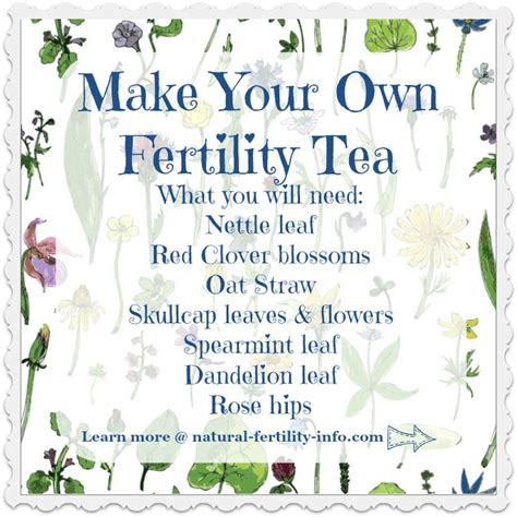 Best Detox Tea For Fertility by A Great Tea Recipe To Help Boost Your Fertility And Help