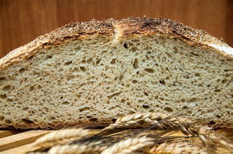 dispensa pane e pane misto al grano duro svuota dispensa pasta madre