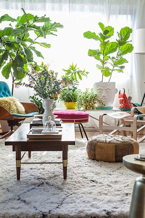 indoor plants living room ideas 20 unforgettable indoor plant displays ideas