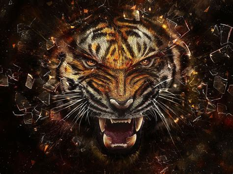 tiger tattoo hd wallpaper download tiger full hd wallpaper and background image 1920x1440