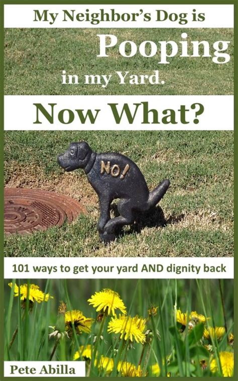 what to do when a dog poops in the house what to do with dog poop in backyard 28 images natural ways to dispose of dog poop