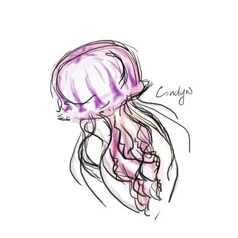 Drawing Jellyfish by Jellyfish Sketch 1 Nachareun