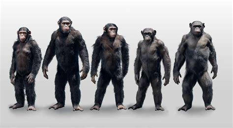 awn of the planet of the apes concept art dawn of the planet of the apes