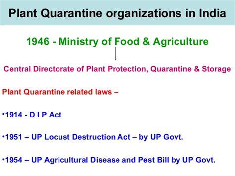 yahoo email quarantine plant quarantine