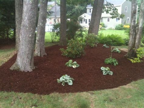 backyard mulch bed brookscapes property services