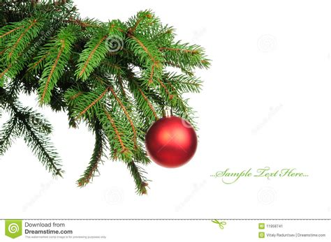 pine branches and christmas decoration stock image image