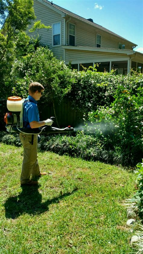 mosquito solutions backyard mosquito control mt pleasant sc