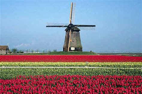Fun things to do when in the netherlands