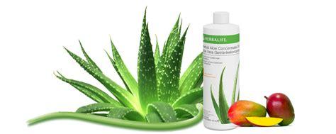 Herbalife Aloe Mango herbal aloe mango