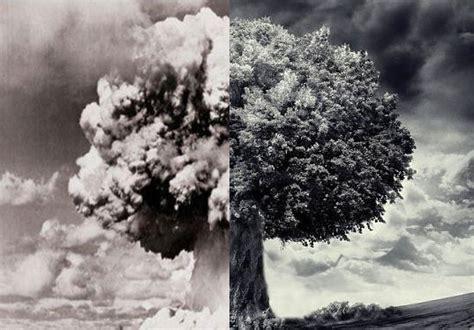 Peace War war and peace sequoit media