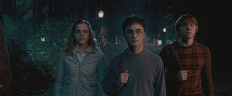The At The Harry Potter And The Order Of The Premier by Harry Potter And The Order Of The Ronald Weasley