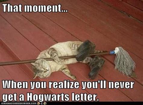 Hogwarts Acceptance Letter Meme Stop Explaining Yourself