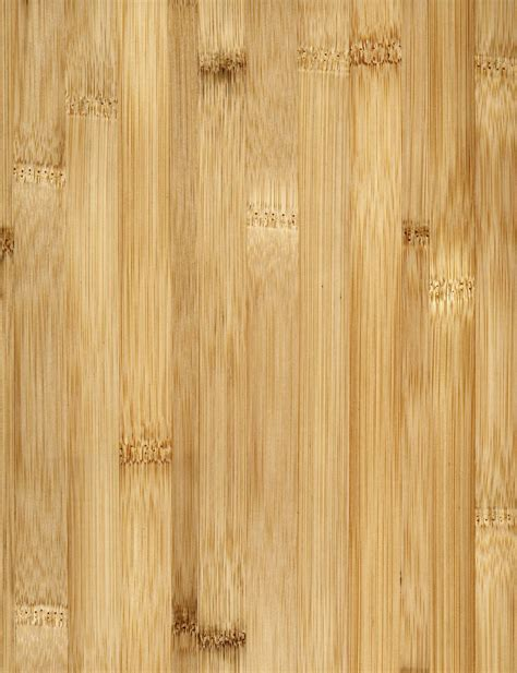 Bamboo Flooring: The Basics