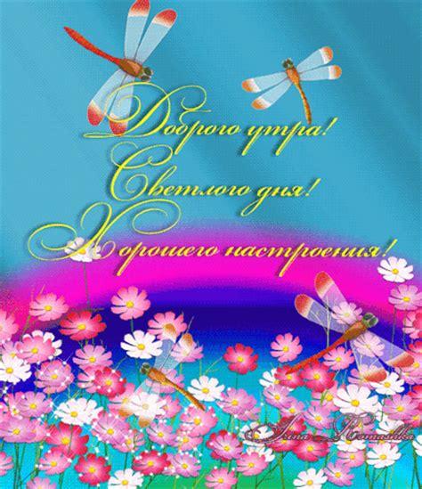 sr denied guestbook lolibaby shotclip sr denied guestbook ru newhairstylesformen2014 com