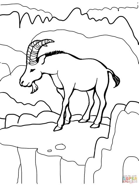 wild dog coloring page ibex wild goat coloring page free printable coloring pages