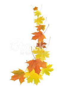 Fall leaves border stock photos freeimages com