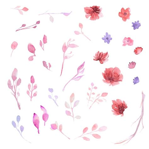 Flower Collection watercollor flower collection vector free