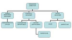 Kitchen Organization Chart