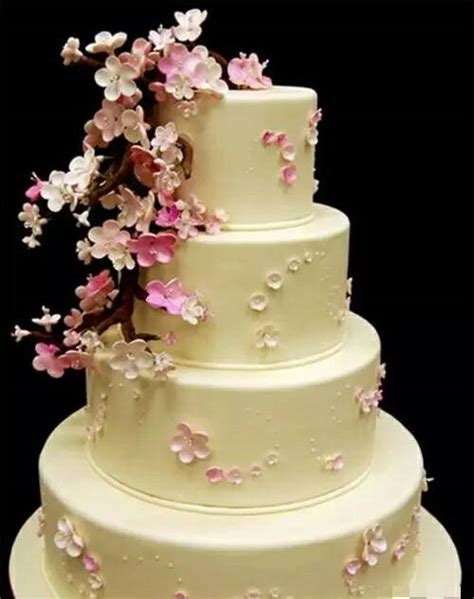 Wedding Cakes For Beginners by Wedding Cake Decorating Ideas Beginners Idea In 2017