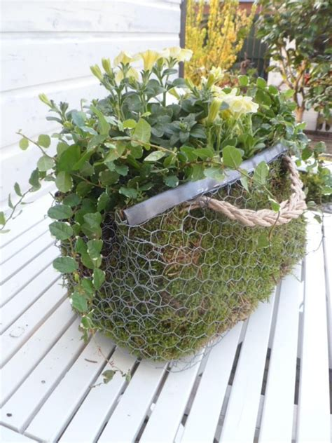 Wire Planters by 17 Best Images About Chicken Wire Crafts On