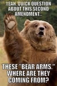 Bear Meme - funny polar bear memes