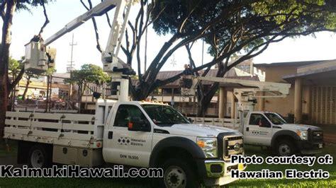 hawaii island electric company hawaiian electric company heco employees volunteer to