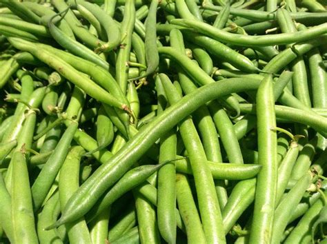 types of garden beans top 10 vegetables to grow in your garden mnn