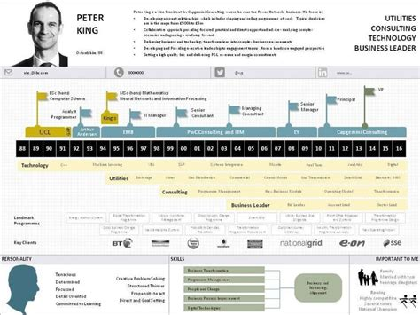 Resume Timeline by 1000 Images About Infographic Visual Resumes On