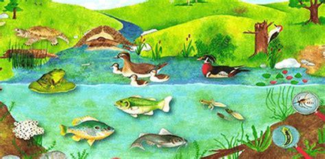 Gartenteich Tiere by Pond Home Page