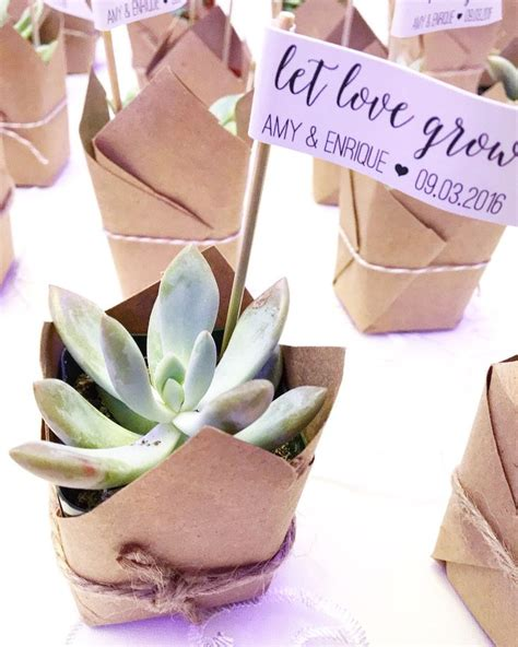 Wedding Favors by 25 Best Ideas About Succulent Wedding Favors On