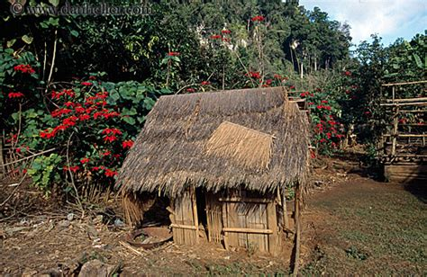 Thatch Hut Thatched Roof Hut