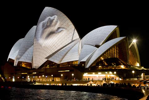 The Sydney Opera House At Vivid Live Share Design