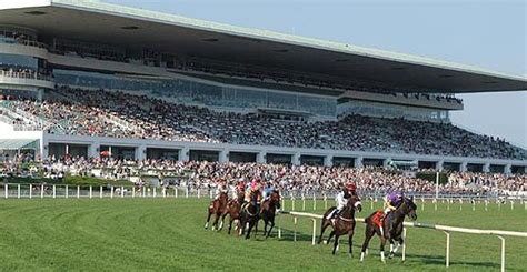 arlington park arlington race track beautiful grounds chicago