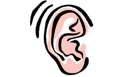 gambar telinga kartun www pixshark images galleries with a bite